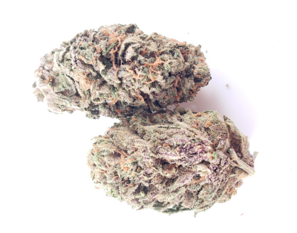 Purple Crystal Coma Strain